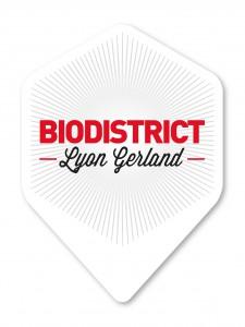 Logo Bidistrict Lyon Gerland